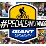 pedaleando_01